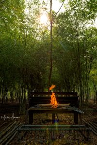 Bending bamboo – making the bamboo poles straight by using heat